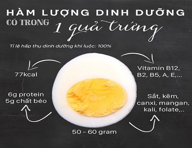 Hàm lượng dinh dưỡng có trong trứng gà