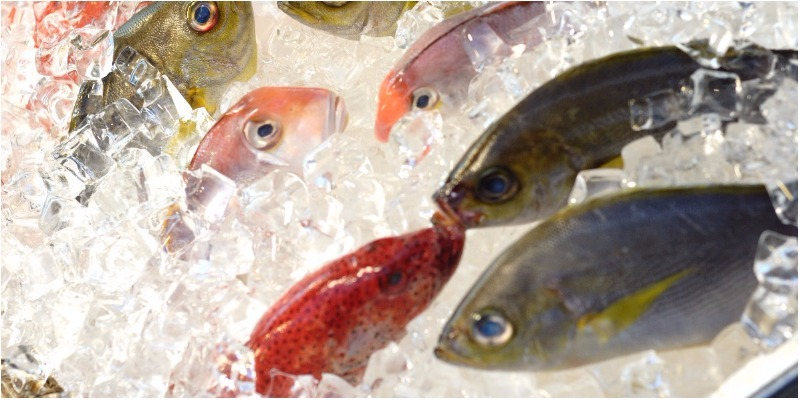 bảo quản thực phẩm bằng phương pháp đông lạnh