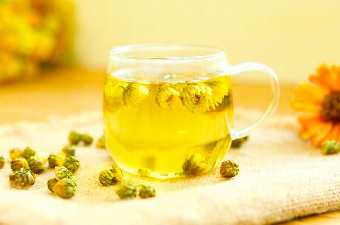 Uống trà thảo mộc hoa cúc