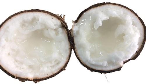Không nên ăn dừa sáp trong quá trình giảm cân